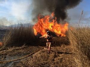 EFA Malvesia quema2